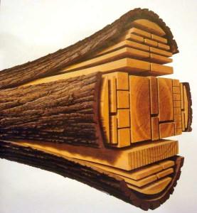las maderas en estudio interior barcelona 2